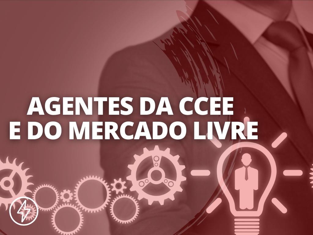 Agentes da CCEE e do Mercado Livre